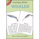 Learning About Whales