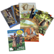 Bible Truths K4 Teaching Cards & Guide 2ED