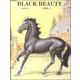 Black Beauty Worktext