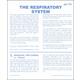 Respiratory System Microslide Lesson Set