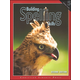 Building Spelling Skills 5 Worktext 2ED