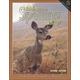 Building Spelling Skills 8 Worktext 2ED