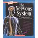 Nervous System (True Book)