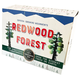 War of the Ages, Episode 3 - Darwin's Life and Legacy DVD