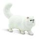 Persian Cat (Best in Show)