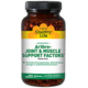 Arthro-Joint & Muscle Support Factors