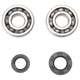 Pro X Crankshaft Bearing and Seal Kit