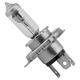 Adjure Head Lamp H4 Replacement Bulb