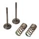 Pro X Steel Exhaust Valve/Spring Kit