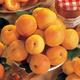 Stark SweetHeart Apricot
