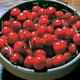 Surefire Pie Cherry