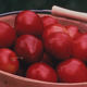 Alderman Plum