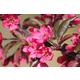Prairifire Flowering Crabapple