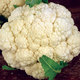 Amazing Cauliflower Seed