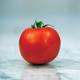 Bonny Best Tomato Seed