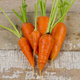 Chantenay Red Core Carrot Seed
