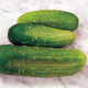 Chicago Pickling Cucumber Seed