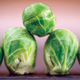 Long Island Improved Brussel Sprouts Seed