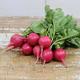 Pink Beauty Radish Seed