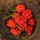 Carolina Reaper Hot Pepper Seed