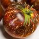 Dark Galaxy Tomato Seed
