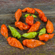 Habanada Sweet Pepper Seed