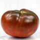 True Black Brandywine Tomato Seed