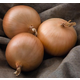 Patterson Onion