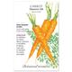 Danvers 126 Carrot Seed