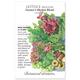 Farmers Market Blend Mesclun Lettuce Seed