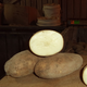 Caribou Russet Seed Potato
