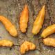 Sugar Rush Peach Hot Pepper Seed