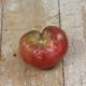 Black Krim Tomato Seed