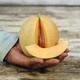 Minnesota Midget Melon Seed
