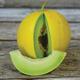 Golden Honeymoon Melon Seed