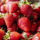 Chandler Strawberry