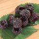 Allen Black Raspberry