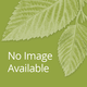 Mandarin Honeysuckle Vine