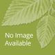 Free Gift  Daylilies