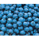 Southmoon Blueberry