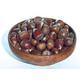 Chestnut Seedling Pollinator