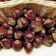 Eaton Chestnut