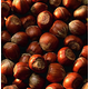 Barcelona Filbert Hazelnut