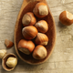 Royal Filbert Hazelnut