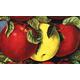 2N1 Antique Apple