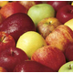 Connoisseur Apple Lovers Assortment