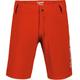 Dakine Pace Kids Shorts