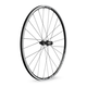 DT Swiss R24 Spline Road Wheel
