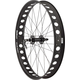 Surly Fat Bike Wheel With Novatec Hubs