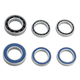 Ceramicspeed Wheel Bearing Upgrade Kit